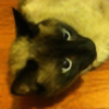 piousflea's avatar