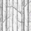 pixiepop15's avatar