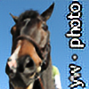 PixleAteIt's avatar