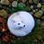 PiyoPiyoChan13's avatar