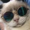 PlanetBethany's avatar