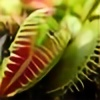 PlanteVerteInfernale's avatar