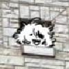 Pokeark's avatar