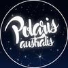 PolarisAustralis's avatar