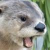 Ponsii's avatar