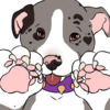 PoodleSpit's avatar