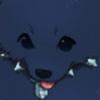 porigiri-noodle's avatar