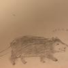 Possumpencils's avatar