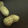 potatopower10001's avatar