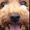 Potatotat's avatar