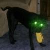 ppslapper's avatar