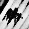 prazokc's avatar