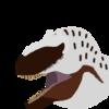 Predator3174PL's avatar
