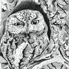 prehartwork's avatar