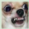 PrettyUnicorn32's avatar