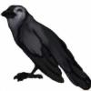 princeofthehunt's avatar