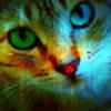 Princess-Stone's avatar