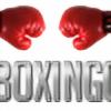 proboxinggear's avatar