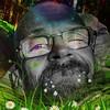 psilokybel's avatar