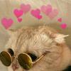 purblekitty's avatar
