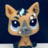 Purpis's avatar