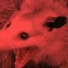 purpleLavender99998's avatar