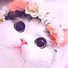 Purrkiss's avatar