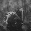 PyReX-BoY's avatar