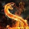 pyroassassin22's avatar