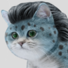 Pyrohawkz's avatar