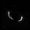 Qahnareen's avatar