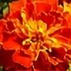 qba-green's avatar