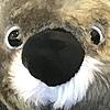 Qiblilover's avatar