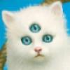 qitelremel's avatar