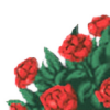 qorilla's avatar