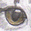 Quachir's avatar