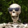 Quazbut's avatar