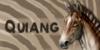 Quiang's avatar