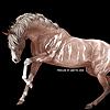 r-ot's avatar