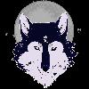 RaakxhyrShapeshifter's avatar