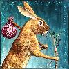 rabbittrails's avatar