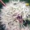 Rachel827123's avatar