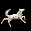 Radiocup's avatar