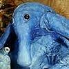 Ragnar0z's avatar