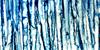 Rain-Is-Life's avatar