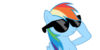 Rainbow-DASH-swagger