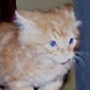 Rainbowshiftwarrior3's avatar