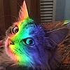 RainbowSparkleZedd's avatar