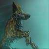 Rainkore's avatar