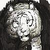 Rainy-Frog's avatar